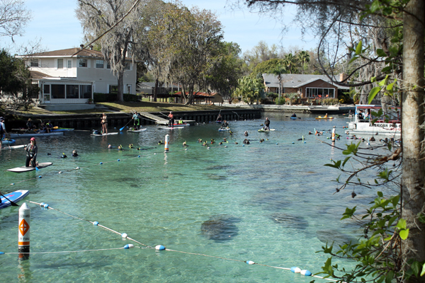 Three Sisters Springs Open House